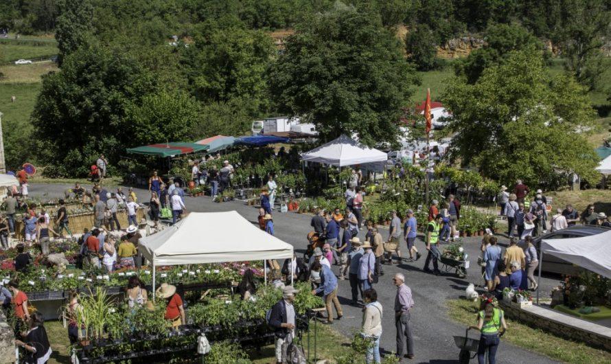 La 30 ème fête des plantes en préparation