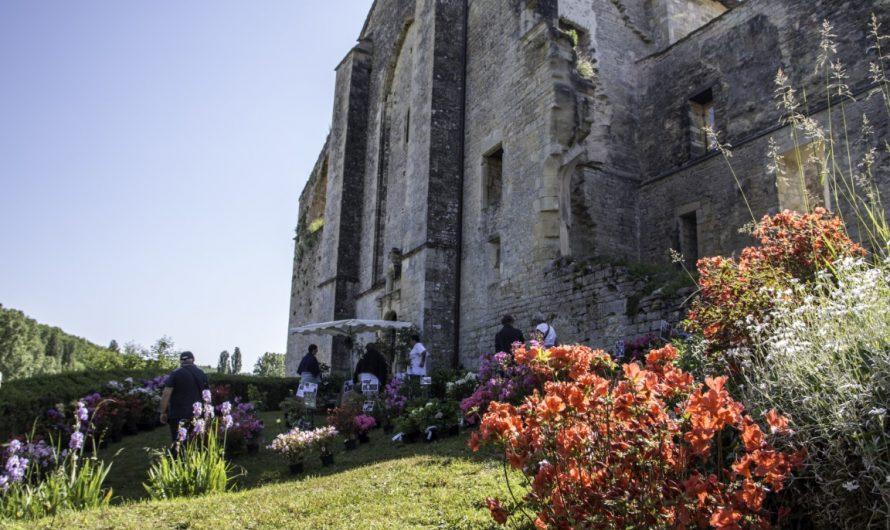 L'Abbaye-Nouvelle (English)